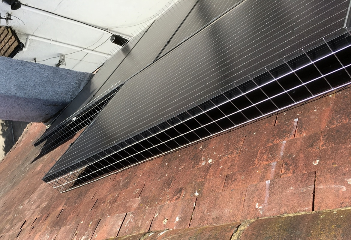 Pigeon Proofing Solar Panels Amp Bird Protection 10 Yr