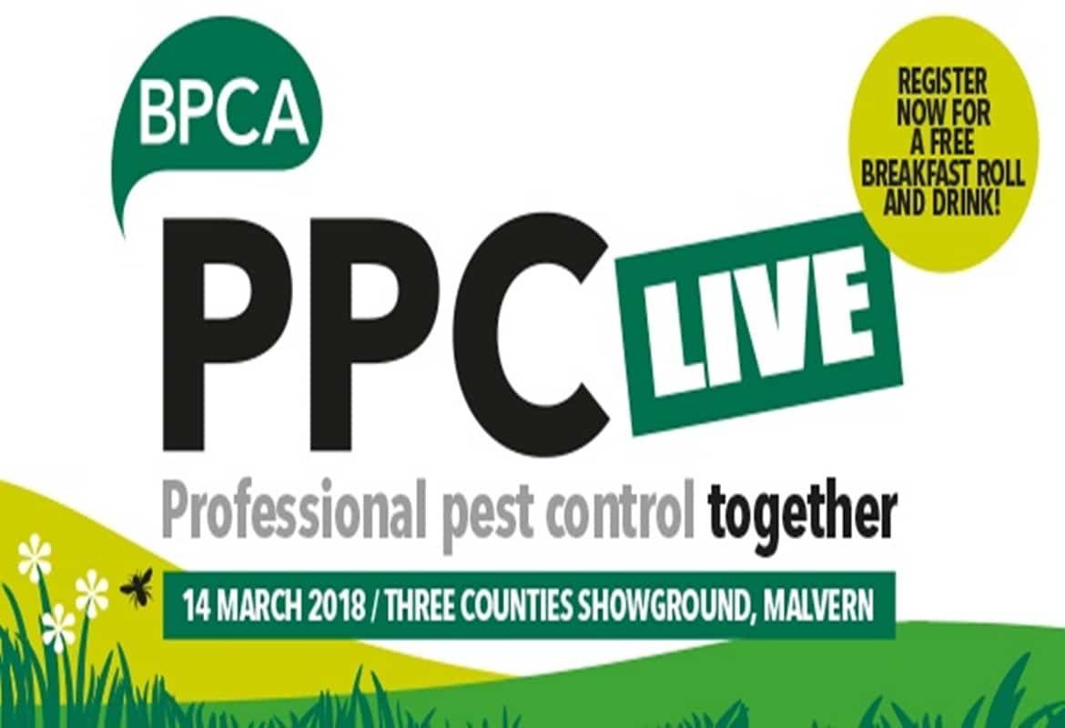 Hawking, pigeon and gull control at PPC Live