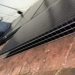 Solar Panel Pigeon Proofing